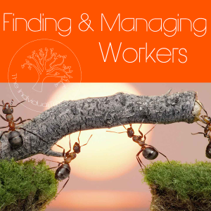Link to more information about how The IndividualiTree can help you find, train and manage your support workers.